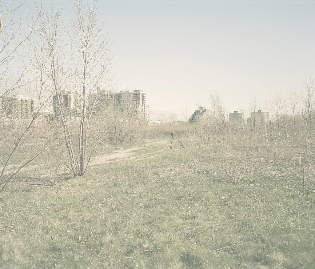 zhijiage-12.jpg